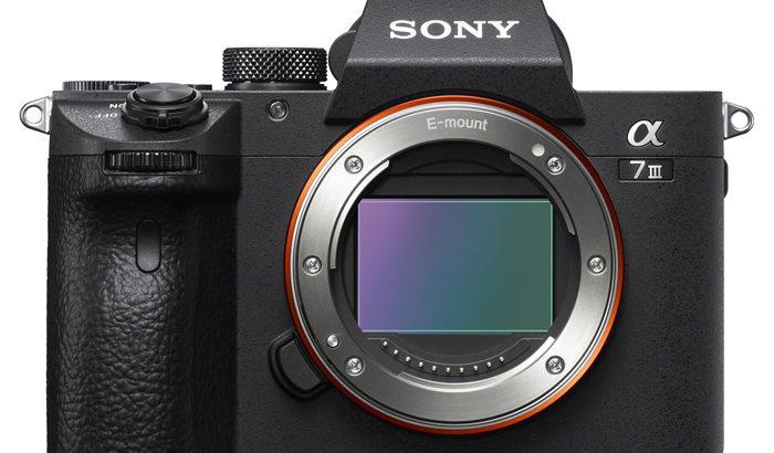 フルサイズミラーレス3社のメリットと気になる点【SONY、Nikon、Canon】