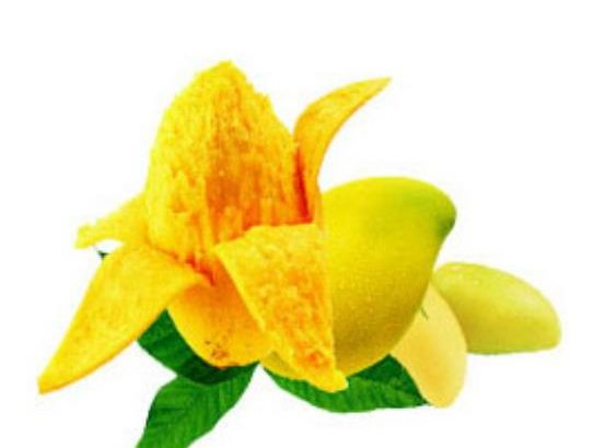 【healthcabin】フレーバー Malaysian Mango【若々しい香りと控えめな甘さ】