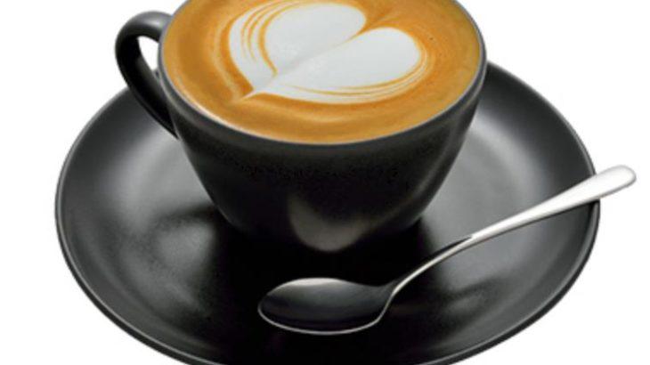 【healthcabin】フレーバー Cappuccino【まろやかクリーミーがたまらない】
